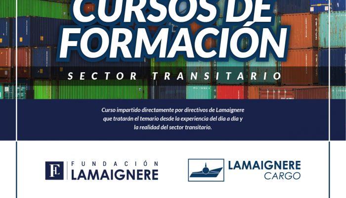 formación en sector transitario
