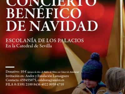 concierto benéfico de navidad